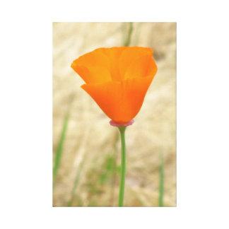 Beautiful Yellow Orange Flower Canvas Print