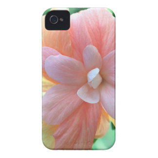 Beautiful Yellow, Orange & Pink Hibiscus Flower iPhone 4 Cases