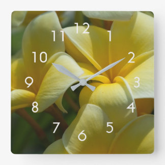 Beautiful Yellow Plumeria Floral Square Wall Clock