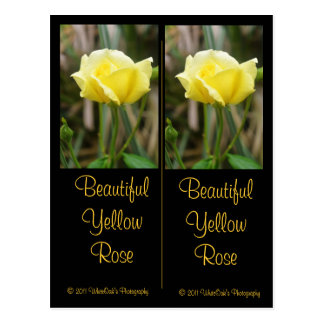 Beautiful Yellow Rose Bookmark Postcard