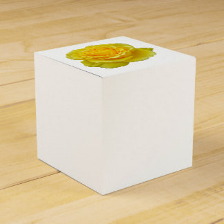 Beautiful Yellow Rose Closeup Isolated Favour Box