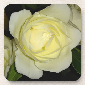 Beautiful Yellow Rose Coaster