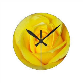 Beautiful yellow rose petals clocks