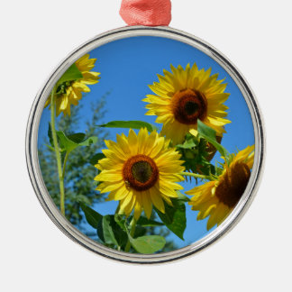 Beautiful yellow sunflowers Silver-Colored round decoration