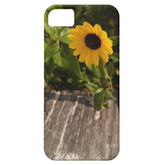 Beautiful yellow wildflower phone case iPhone 5 cases