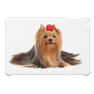 Beautiful Yorkshire Terrier iPad Mini Covers