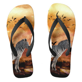 Beautiful zebra with birds thongs