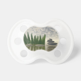 Beautiful zen landscape in the middle of aquatic baby pacifier
