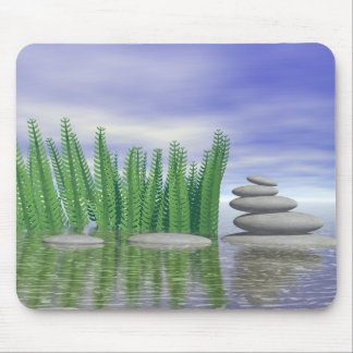Beautiful zen landscape in the middle of aquatic mouse pad