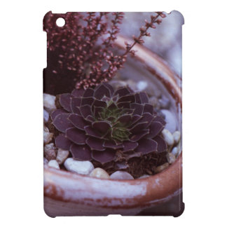 Beautilful 35mm FIlm Photo Cover For The iPad Mini