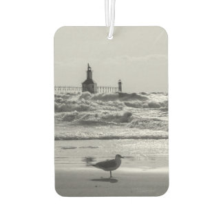 Beauty And Force Grayscale Car Air Freshener