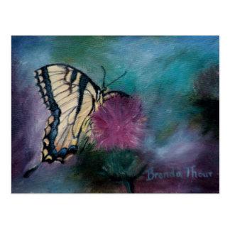 Beauty Butterfly Postcard