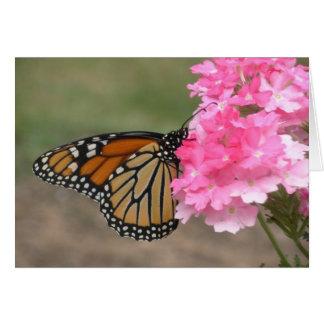 Beauty in the Garden Card