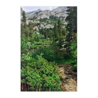 Beauty in the Sierras Acrylic Print