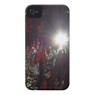 Beauty in the Sumac Case-Mate iPhone 4 Case