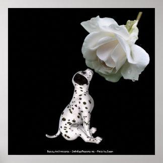 Beauty Innocence Dalmatian And Rose Poster Print