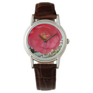 Beauty Is A Pink Camellia Flower, Watch