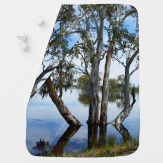 Beauty Of A Gum Tree, Riverland Australia, Baby Blanket