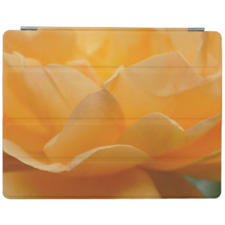 Beauty Of A Rose iPad Cover