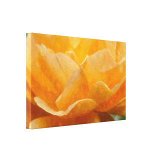 Beauty Of A Rose Painterly Canvas Print