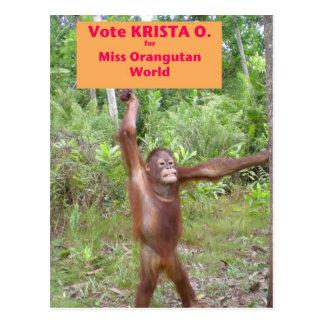 Beauty Pageant Activist Postcard