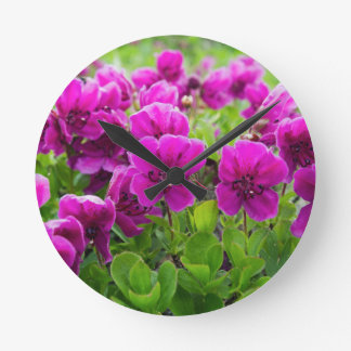 Beauty purple flowers Rhododendron camtschaticum Round Clock
