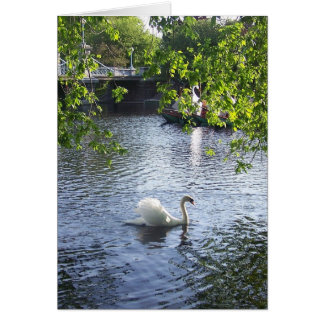 Beauty under the boughs greeting card