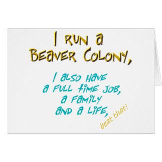 beaver leader turquoise card