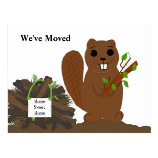 Beaver with Dam - We've Moved Postcard