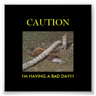 Beaver's Bad Day Poster