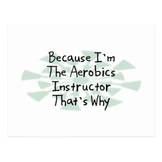 Because I'm the Aerobics Instructor Postcard