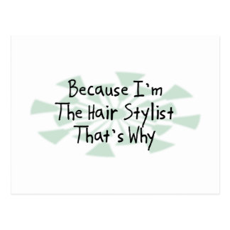 Because I'm the Hair Stylist Postcard