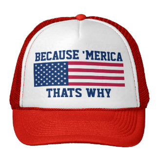 Because 'Meria Thats Why American Flag Cap