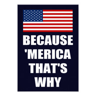Because MERICA That s Why Patriotic Party Invites