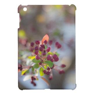 Becoming Spring iPad Mini Covers