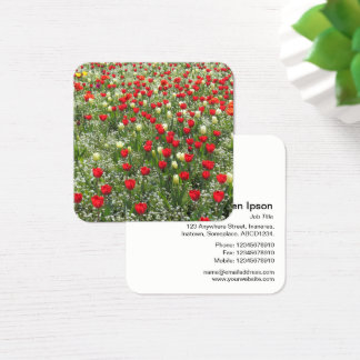 Bed of Tulips and Other Flowers Square Business Card