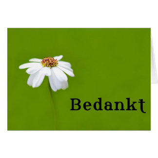 Bedankt - THank you in Dutch Card