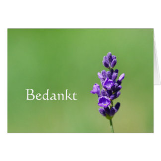 Bedankt - Thank you in Dutch with lavender flower Card