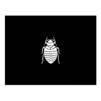 Bedbug Insect Print Postcard