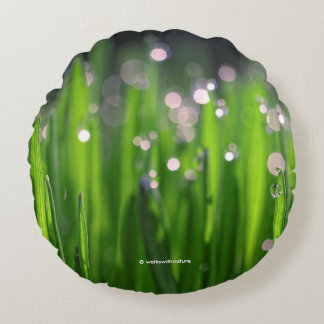 Bedewed Wheatgrass in the Morning Light Round Cushion