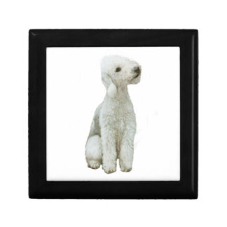 Bedlington Terrier (A) Small Square Gift Box