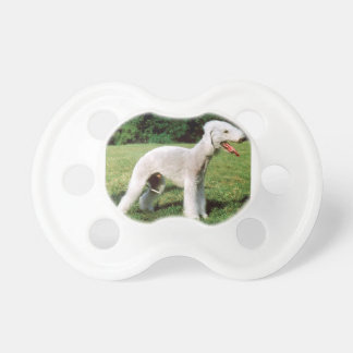 Bedlington Terrier Dog Dummy