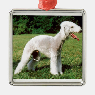 Bedlington Terrier Dog Metal Ornament