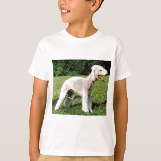 Bedlington Terrier Dog T-Shirt
