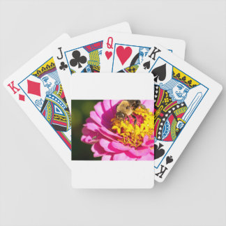bee and bug standing on a purple flower bicycle playing cards