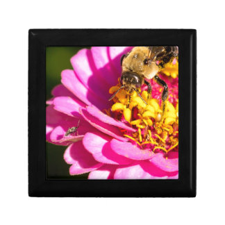 bee and bug standing on a purple flower small square gift box
