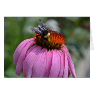 Bee and Flower Note card- Blank Greeting Card