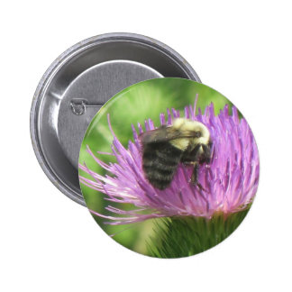 Bee and Thistle Button 2 Inch Round Button