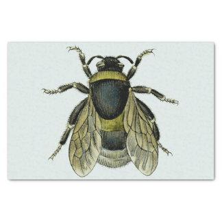 Bee antique illustration tissue paper