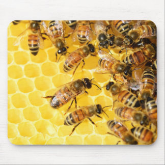 Bee Bees Hive Honey Comb Sweet Dessert Yellow Mouse Pad